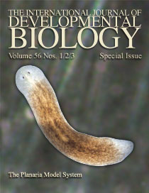 planarian research paper Planarian behavior: a student-designed laboratory planarian behavior: a student-designed laboratory exercise planarian taxes that you can observe in the.